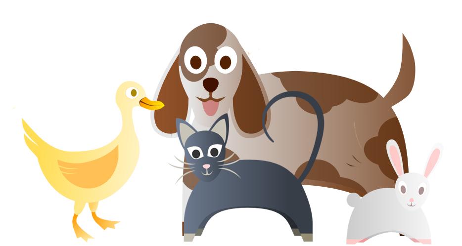 dog, cat, duck & bunny